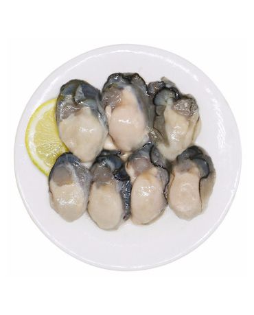 IQF SHUCKED OYSTER MEAT(M) 生蚝肉 (500g/pkt)